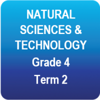 Natural Sciences and Technology - Grade 4 - Term 2
